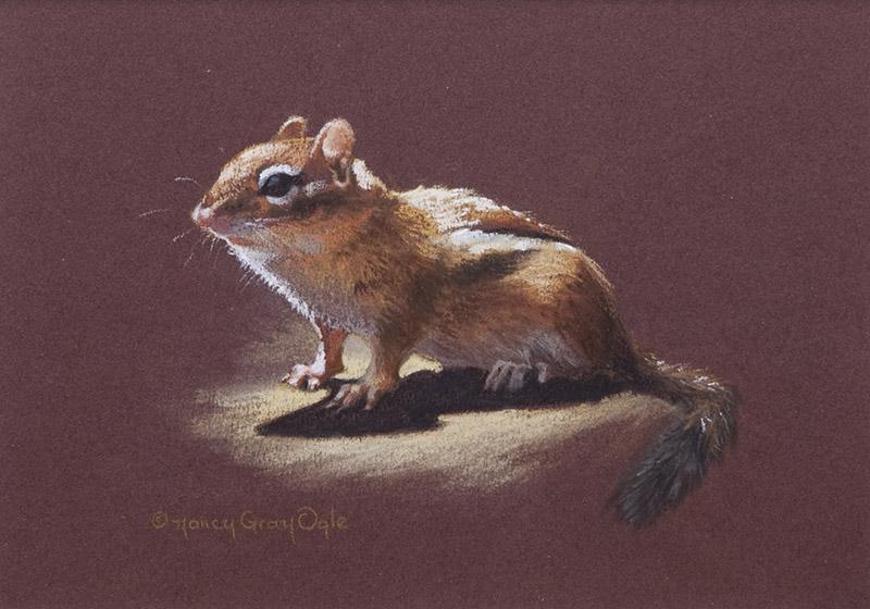 Eastern chipmunk pastel painting, Nancy Gray Ogle